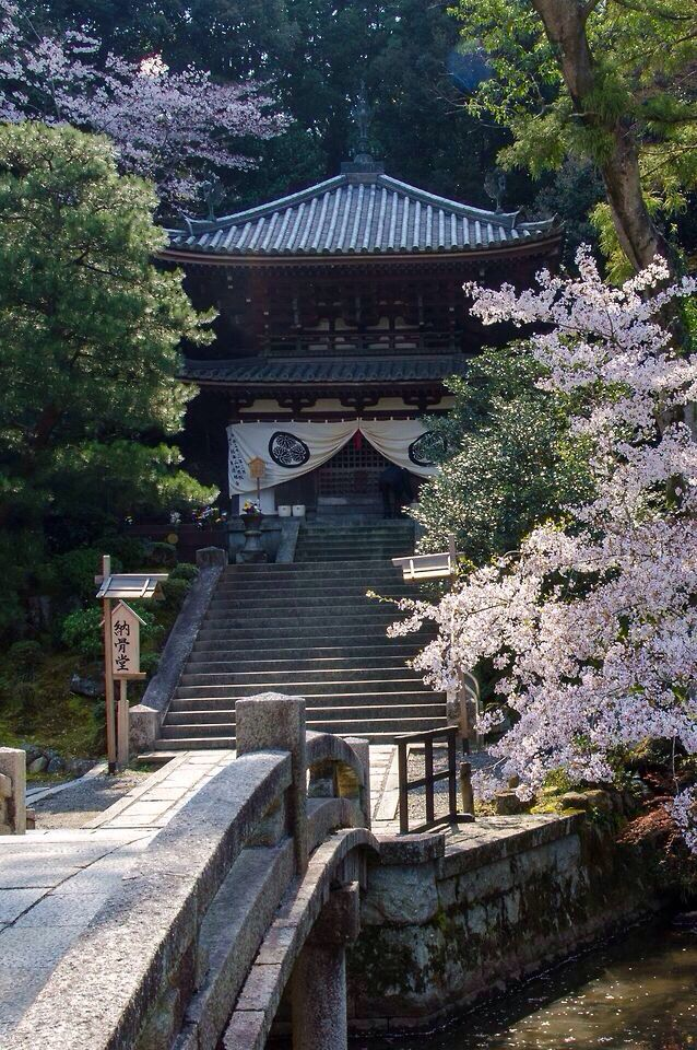 Chion-in Temple in Kyoto, Japan. Spring season. Cherry blossems are in bloom - 知恩院, 春の京都, 日本