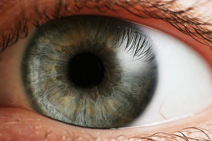 ¿#SabiásQue el #Ojo tiene 6 músculos para mover el globo ocular? #ClínicaCeo #Health. Foto vía http://goo.gl/1pXVmH