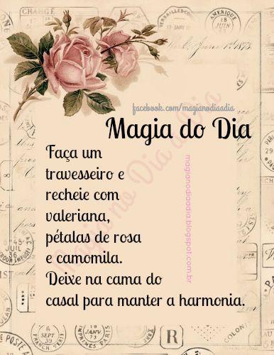 Magia no Dia a Dia: Magia do Dia: harmonia