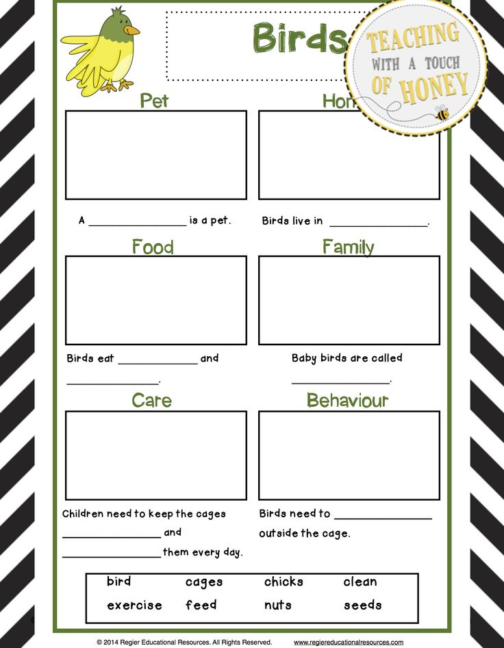 212 best pet REPORTS images on Pinterest Brain breaks, Journal - animal report template example
