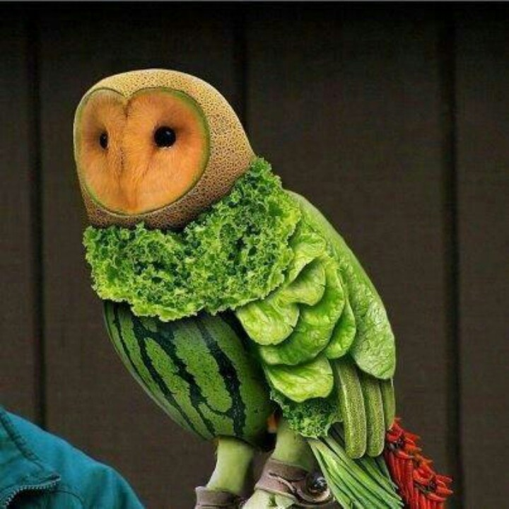 Fruit & Veggie Owl. Wow! This is a work of art!!