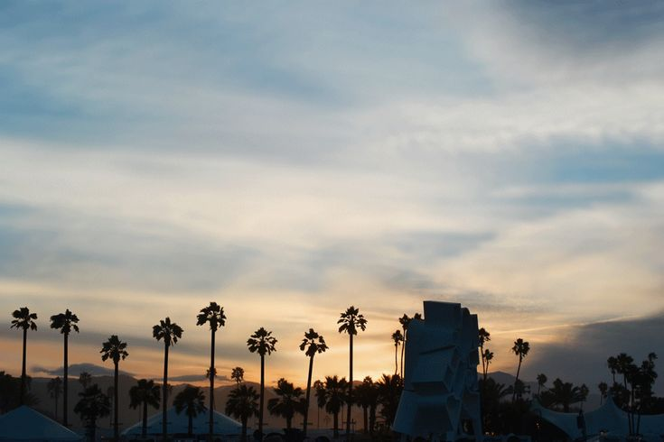 Someone can't wait for Summer #palm #tree #Coachella #dance #hurray [via Fashgif]