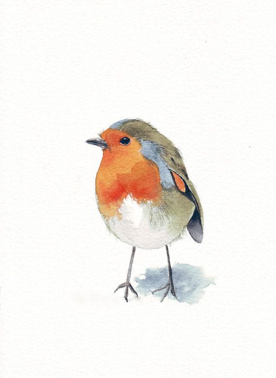 Robin Painting bird - R042- Print of watercolor painting - 5 by 7 print wall art…