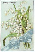 La Madama Bianca: Il linguaggio dei fiori- Il Mughetto