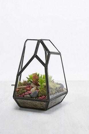 Terrarium de forme géométrique noir en verre - Urban Outfitters