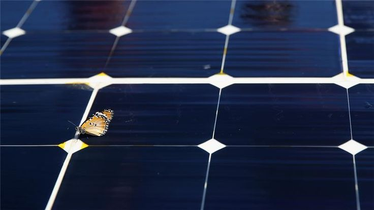 Island nations' leading role in renewable energy