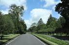 Bali-Botanical-Garden-1
