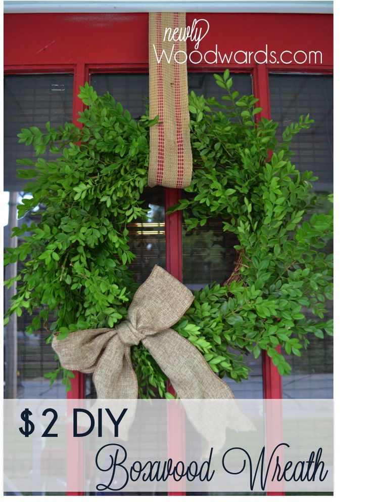 How to make a $2 boxwood wreath. She made 4 out of fresh branches from a 3 ft bush and used grapevine wreaths.