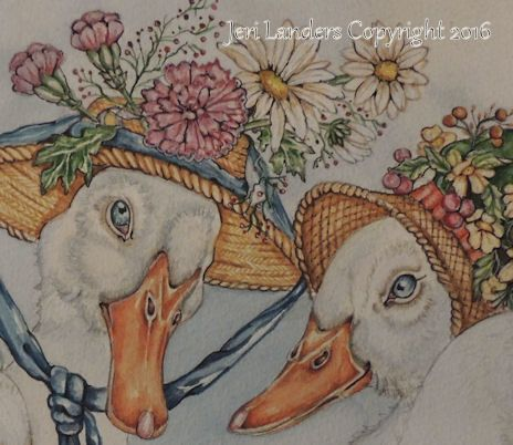 a part of new illustration for garden book. Jeri Landers