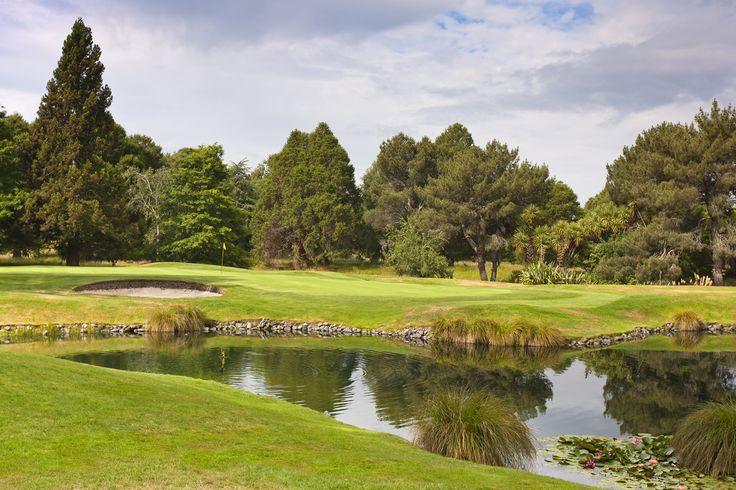 8th green, Wairakei Golf + Sanctuary