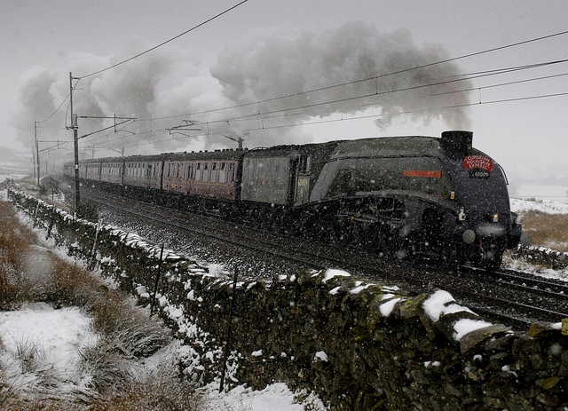 A4 60009 Union of South Africa #train #steam #engine