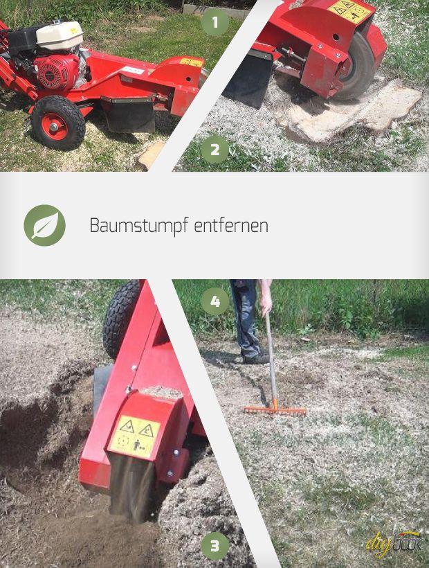 Baumstumpf entfernen mit der Baumstumpffräse - wir zeigen, wie sich mit Hilfe des nützlichen Schwergewichts ein Baumstumpf zügig und sauber entfernen lässt.