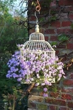 birdcage with flowers. I bought one of these as a gift for a teacher but can't find a plant small enough to fit in the door :-(
