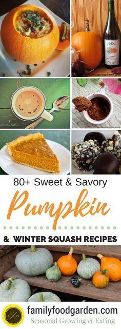 Pumpkin and Winter Squash Recipes