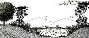 Manejo sostentable de agua (tierramor.org)