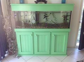 Revamped Fish Tank