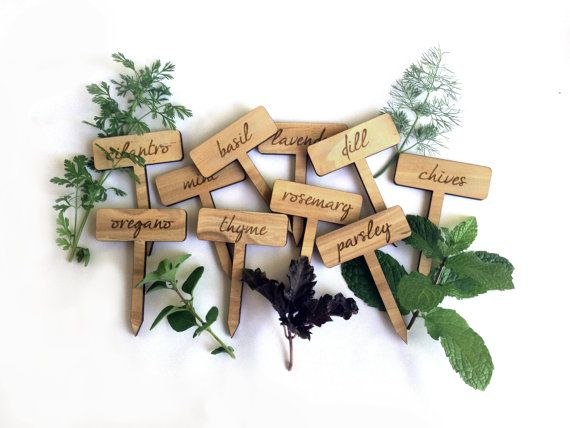 Herb Garden Plant Markers / Set of 10 Wood Engraved by MileNine, $25.00