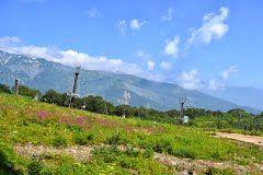 Panoramio - Photo of Hakuba Goryu Alpine Garden, Hakuba Village, Nagano 白馬五竜高山植物園, 長野・白馬村