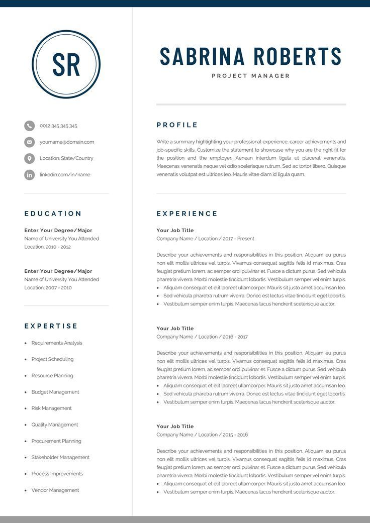 Professional Resume Template Modern Manager Executive Business