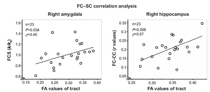 Figure 4 Correlation between SC and FC in the amygdala or hippocampus in the RR MS.