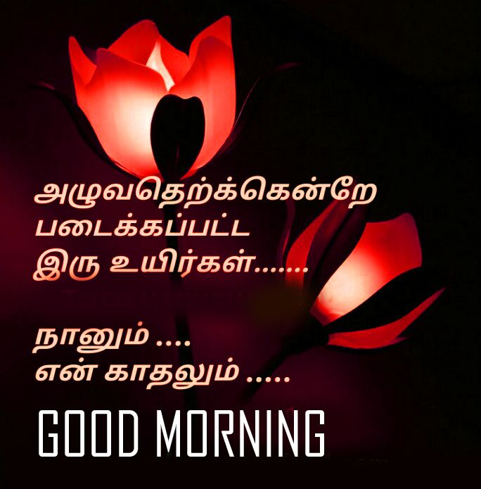 Top 100 Good Morning Images In Tamil Pics Good Morning Tamil Kavithai Good Morning Images Morning Images Good Morning Quotes