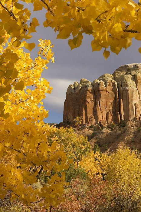 The yellow leaves of fall frame a rock formation in the Rio Grande River Valley near Santa Fe, NM