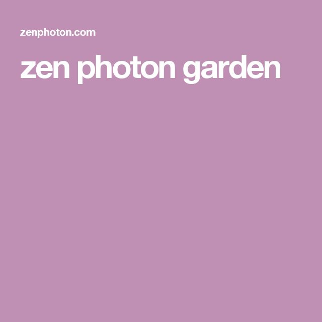 zen photon garden