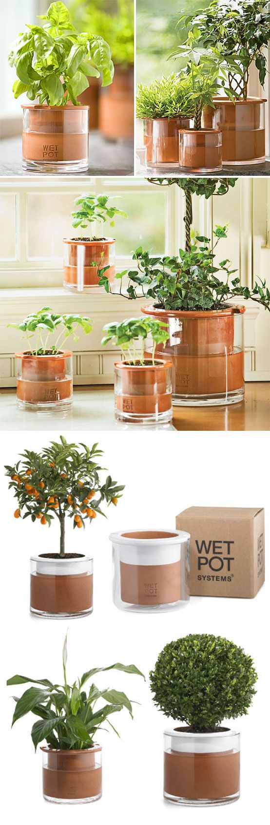 HACKABLE :: Wet Pots by Wet Pot Systems :: (no longer sold :( waaah!) | gardeners.com :: Swedish self-watering planters. Plant absorbs moisture as needed thru the porus clay inner pot. :: REALLY bummed these aren't being sold anymore, to say the least. So, I tested this with an unglazed terracotta pot (the kind that already have a bumped out lip at the top quarter or so of the pot & put it inside a straight sided glass container from the dollar store. It works! | #selfwateringpot #diyplanter