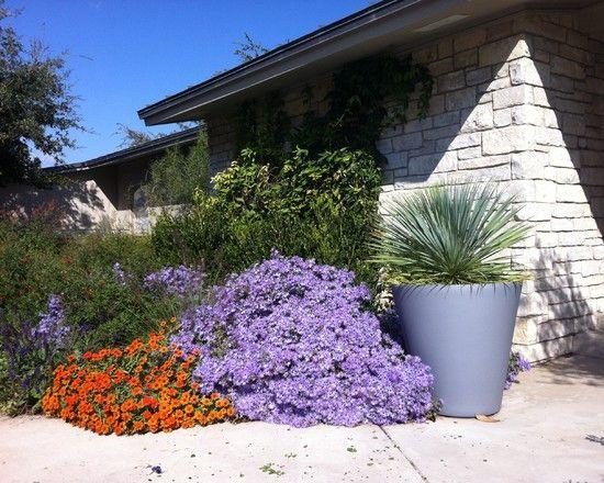147 best native texas plants images on pinterest