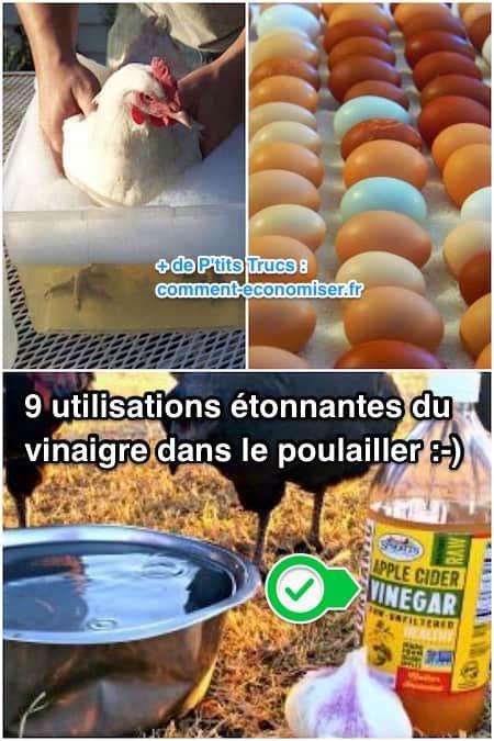 J'ai très vite compris que le vinaigre est aussi très utile lorsqu'on a des poules. Alors voici 9 utilisations du vinaigre au poulailler.  Découvrez l'astuce ici : http://www.comment-economiser.fr/9-utilisations-etonnantes-du-vinaigre-dans-le-poulailler.html