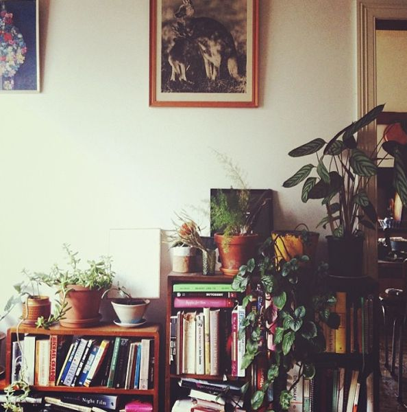 I love how many people have houseplants, books & ceramic bowls these days. It remind me of my 70s childhood ;-)
