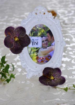 http://www.aranjamentedevis.ro/nunta-cu-paun-marshal-garden/