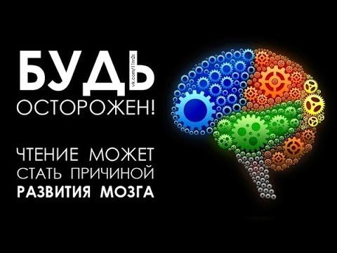 Чем кормить мозг, чтобы улучшить качество памяти и мышления