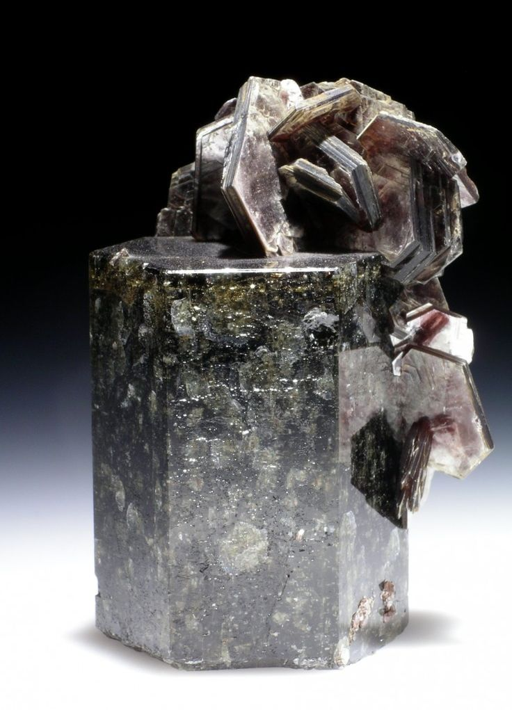 Fluorapatite, Muscovite ~ Zé Pinto prospect, Aldeia, Conselheiro Pena, Doce valley, Minas Gerais, Brazil