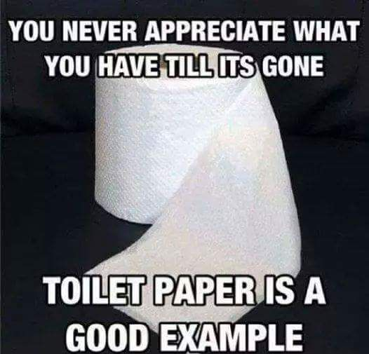 You never appreciate what you have until it's gone,toilet paper is one of them,shitty,meme
