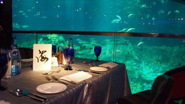 neptune restaurant ocean park liked about hong kong. Black Bedroom Furniture Sets. Home Design Ideas