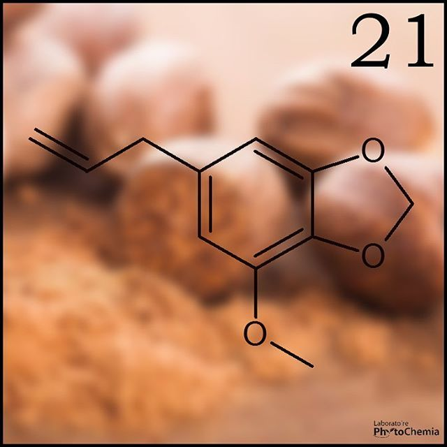 25 days of #PhytoChristmas : Chemistry Edition ! ********************************************** I'm a psychoactive natural organic compound present in small amounts in the essential oil of this spice used to give taste to your eggnog. What am I?  Yesterday's answer : Myrcene  #phytochemia #teamphytochemia #phytofamous #laboratory #lab #essentialoils #chemistryisfun #scienceisfun #phytochemistry #saguenay #quebec #phyto #scienceoninstagram #chemist #chemistry #scientist #sciencelover…