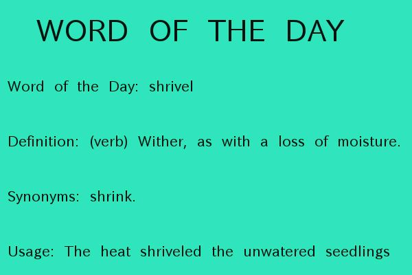 Word of the Day: shrivel