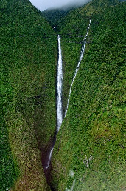 Kahiwa Falls on Molokai Island, #Hawaii, #USAStunning Photographers, Kahiwa Fall, Travel Inspiration, Molokai Waterfall, Molokai Islands, 15 Stunning, Amazing Waterfal, Maui Hawaii, Favorite Placestravel