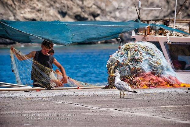 Fisherman & a seabird - Old port - Pera Gialos (photo: George Papapostolou)