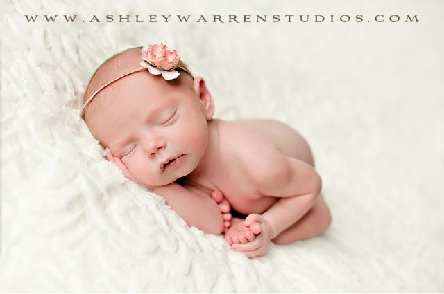 Ashley Warren Studios