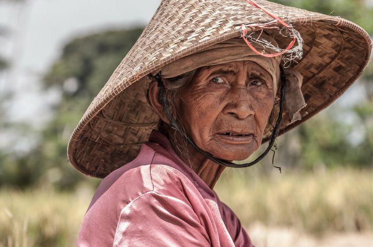 on the rise fields of Bali by Natasha  Belikova on 500px