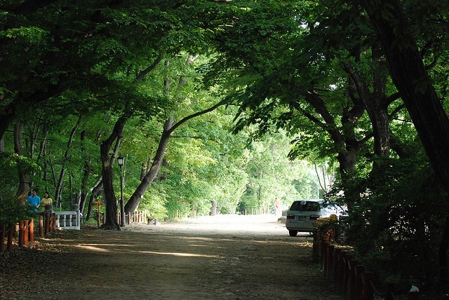 Sang-lim forest, Hamyang, South Korea. The most beautiful place in my hometown