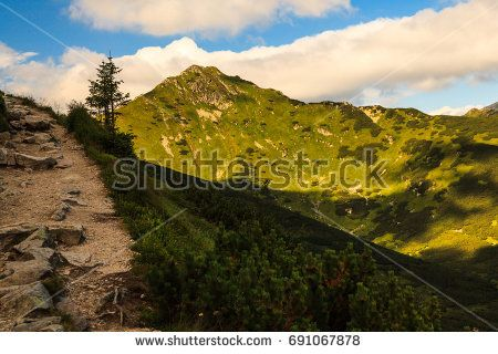 Path in Polish Tatra mountains. --- © 2017 Marcin Świostek Photo All right reserved Feel free to share the original link. For other uses of the photo please contact me.