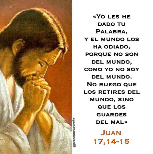 Juan 17 14 15 Yo Les He Dado Tu Palabra Y El Mundo Los Ha Odiado Biblia Católica Palabra De Vida Sagrada Escritura