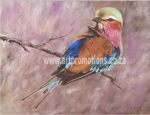 Ron Waldeck, Lilac Breasted Roller