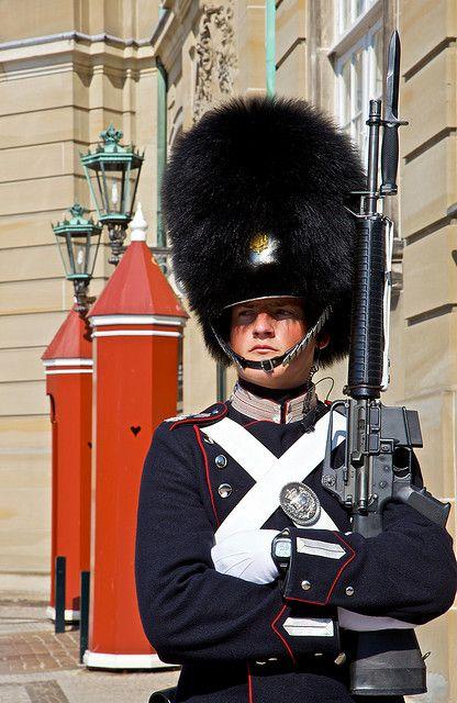 Royal Danish Life Guard