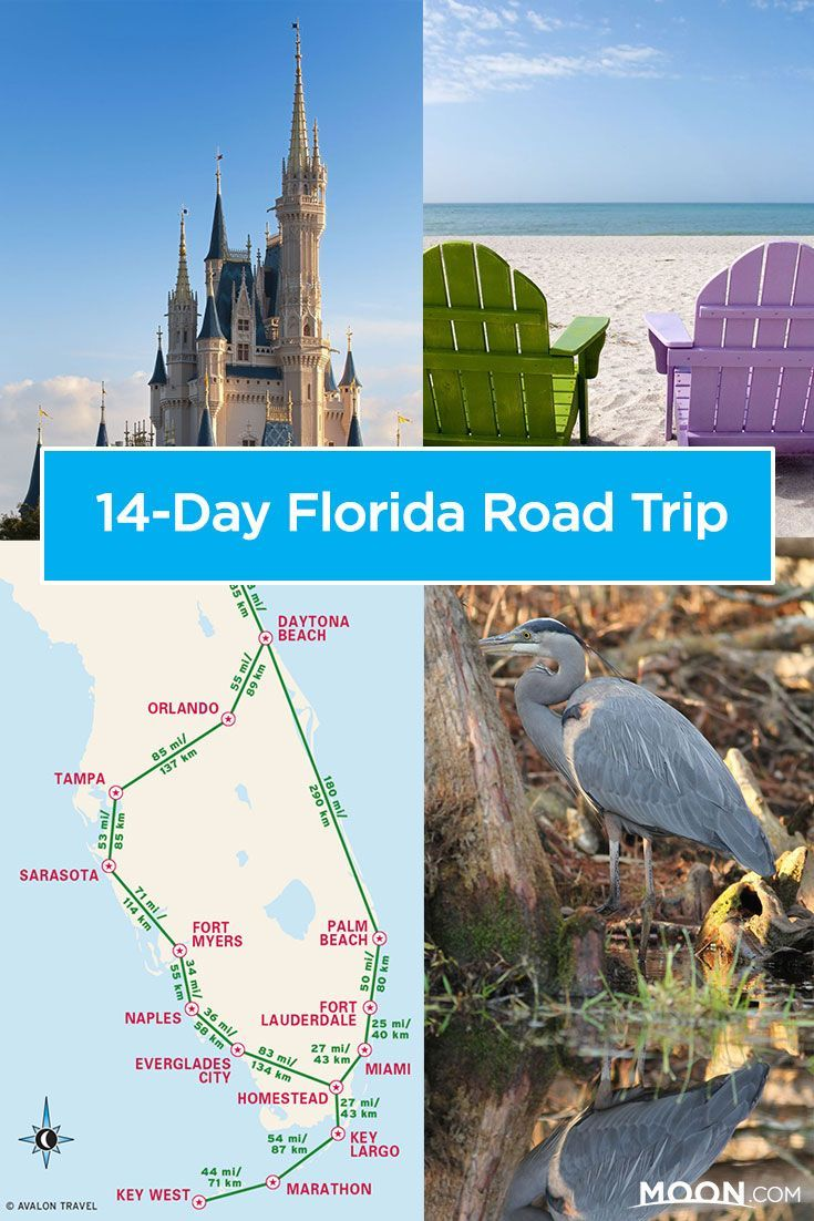 Plan An Epic 14 Day Florida Road Trip With Ideas For The Best Pit Stops And A Handy Travel Map With Drive Time Estimates Florida Roadtrip