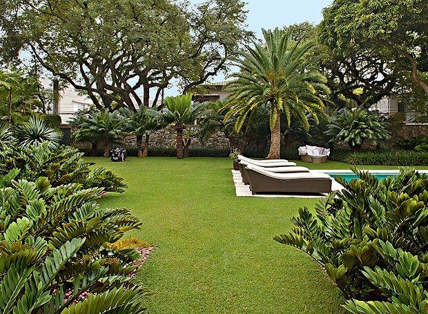 Mais de 1000 ideias sobre Grama Para Jardim no Pinterest  Jardins