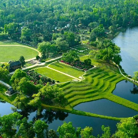 Middleton Place Gardens - oldest landscaped gardens in America and one of my favorite places in Charleston